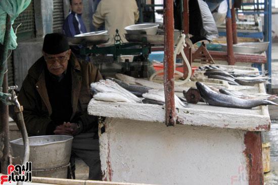 الحاج كمال السحراوي أحد أقدم تجار الأسماك
