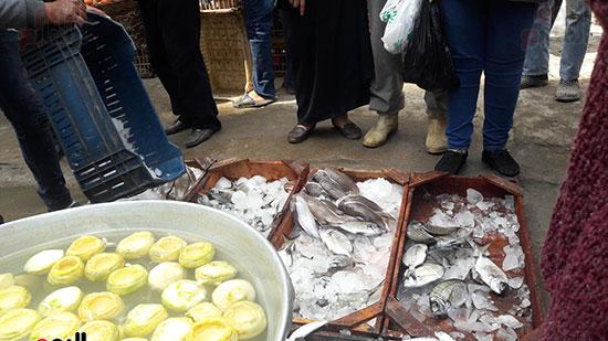 ركود فى سوق الميدان