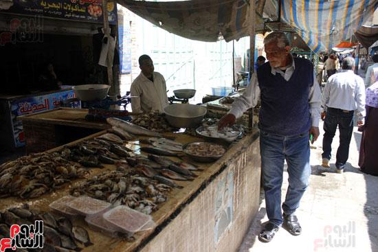 1صبري الطويل  أحد تجار الأسماك