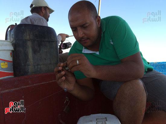 حصاد  صيد  النهار  في الإسكندرية