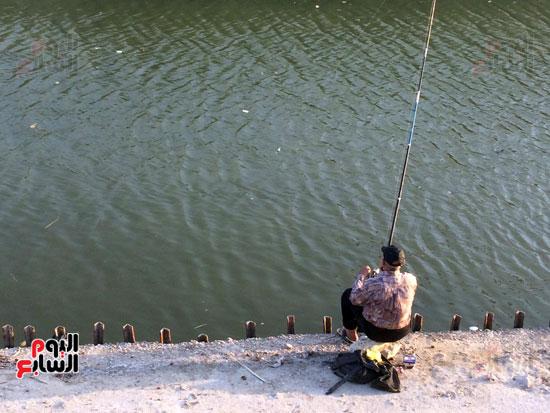 15 - يمتلئ المفيض  بالمياه والأسماك القادمة من بحيرة التمساح ونهاية  فرع  ترعة الإسماعيلية.