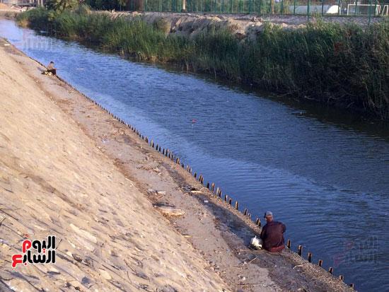 علي  جانب  بحيرة التمساح  تنتشر أسماك الشبار  بأحجام مختلفة