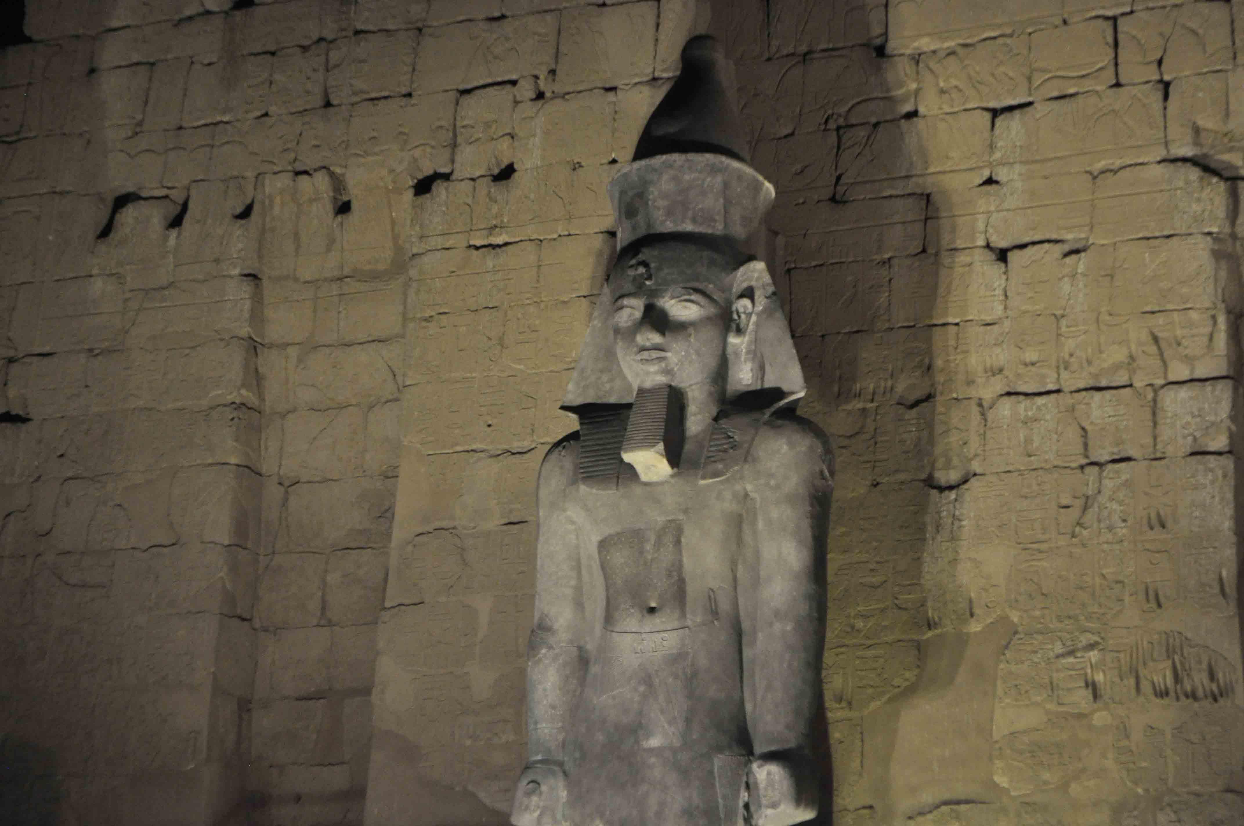 مدير معبد الأقصر