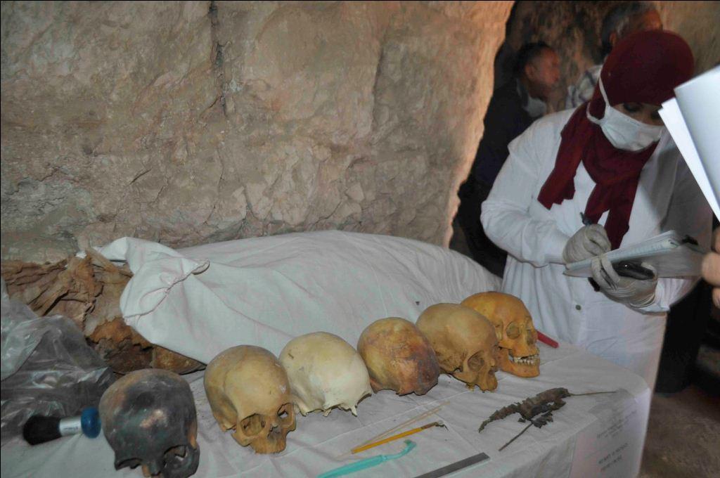 تجهيز ورصد تفاصيل الجماجم المكتشفة بمقبرة أوسرحات