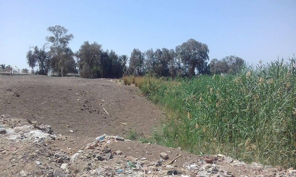 المزرعة تحولت لصحراء جرداء