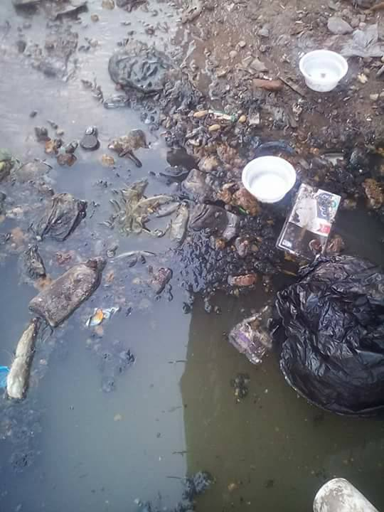 مشاكل الصرف الصحى فى مساكن النوبارية (4)