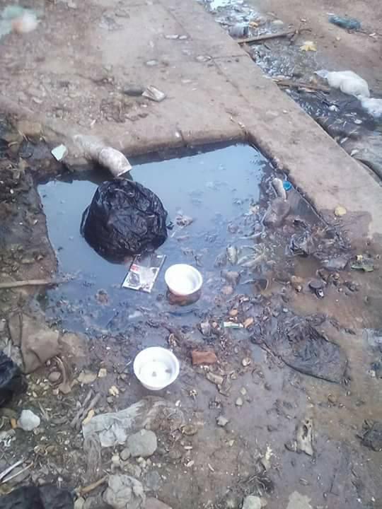 مشاكل الصرف الصحى فى مساكن النوبارية (3)