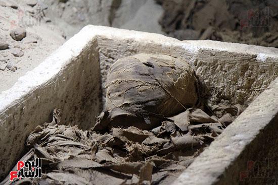 اكتشاف أول مقبرة فى تاريخ مصر الوسطى تضم 18 مومياء بالمنيا (4)