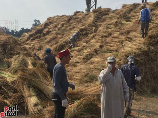 اليوم السابع فى أكبر قلعة لصناعة الكتان بمصر (5)