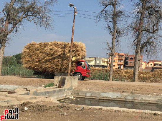 اليوم السابع فى أكبر قلعة لصناعة الكتان بمصر (2)