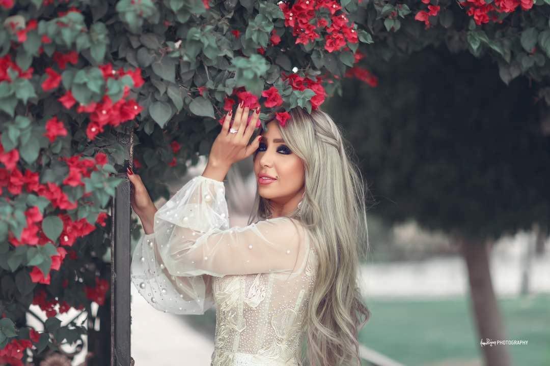 إيمان أبو طالب