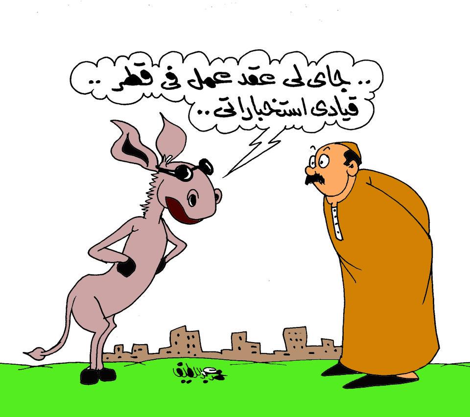 مخابرات قطر تستعين بالحمير