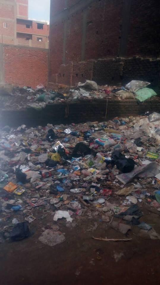 القمامة فى عزبة زينب الوكيل (4)