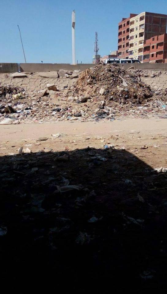 القمامة فى عزبة زينب الوكيل (1)