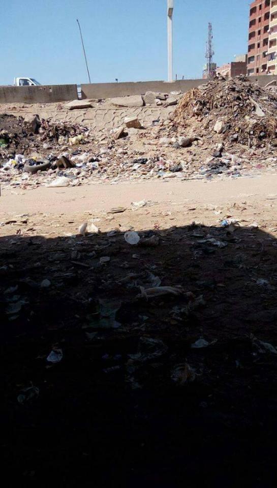 القمامة فى عزبة زينب الوكيل (3)