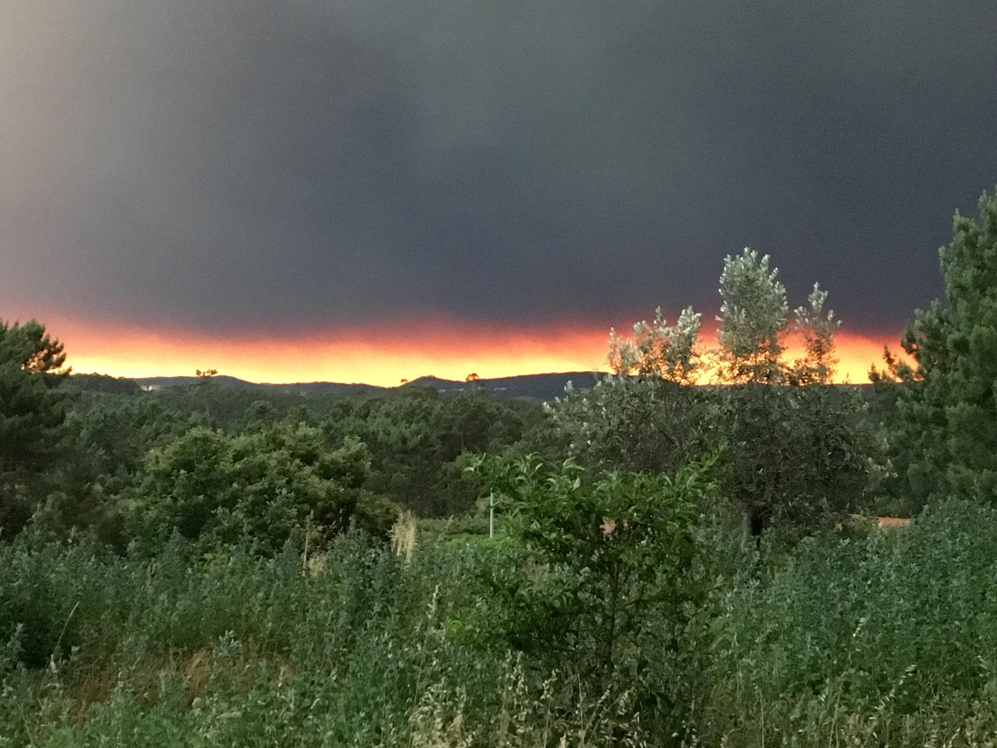 النيران تلتهم أفدنة واسعة فى البرتغال