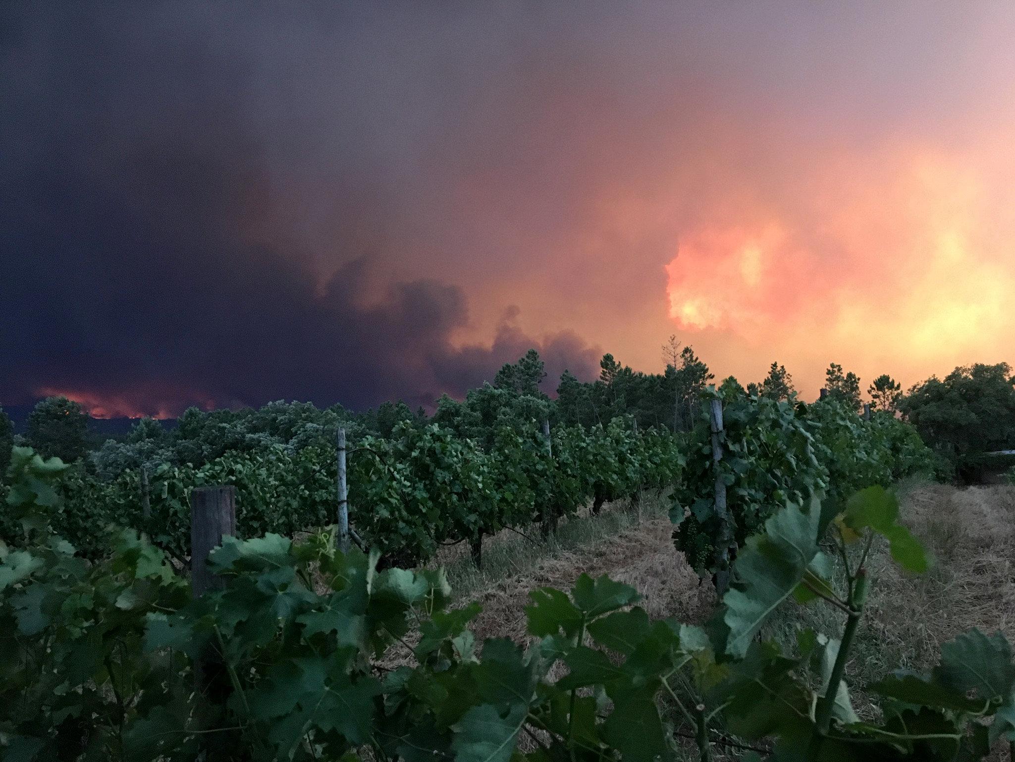 النيران تعلو فى سماء البرتغال