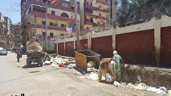 انتشار القمامة بشوارع أسيوط