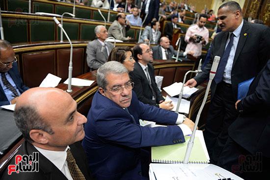الجلسة العامة - مجلس النواب (13)