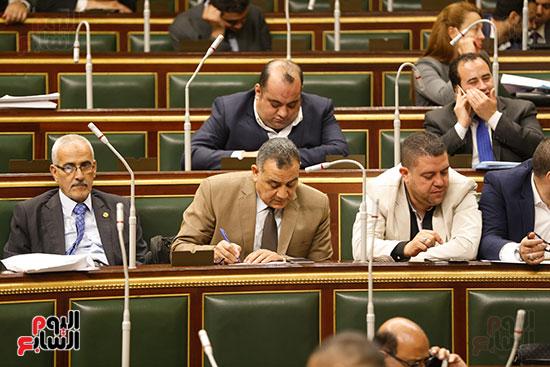 الجلسة العامة - مجلس النواب (6)