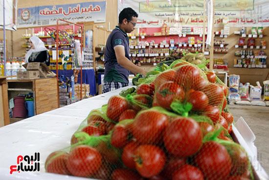 تموين-الإسماعيلية--يطرح-حلوي-العيد-ومواد-غذائية--باسعار-مخفضة----تصوير--محمد-عوض--(8)