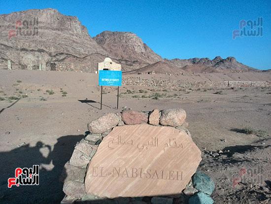 الارض.موجود بمصر..جبل التجليات 65945-1.jpg