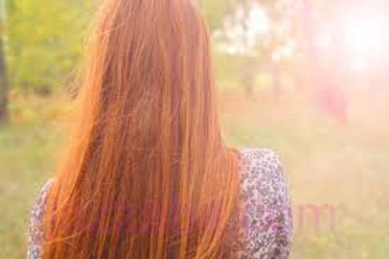 الشعر ب