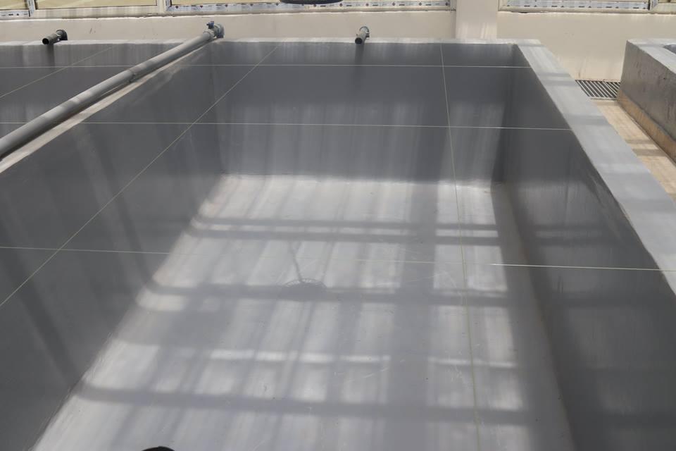 2- أحد الأحواض بالمزرعة السمكية