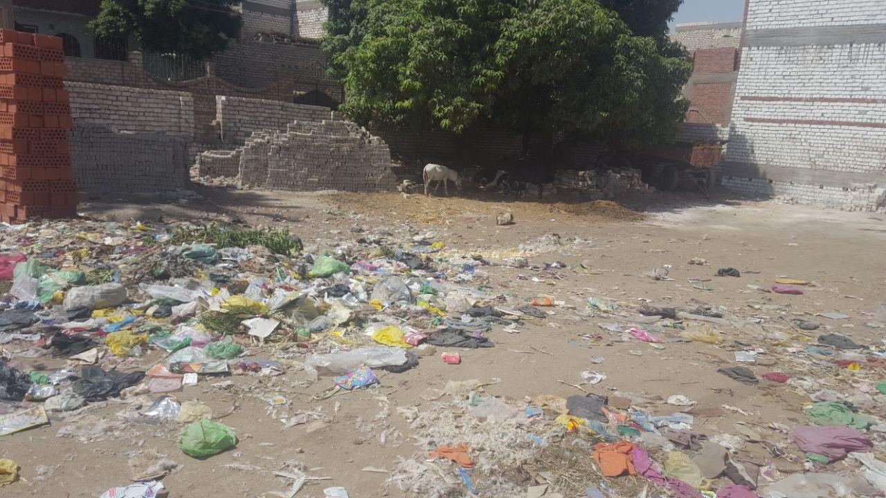القمامة فى قرية طحا الأعمدة