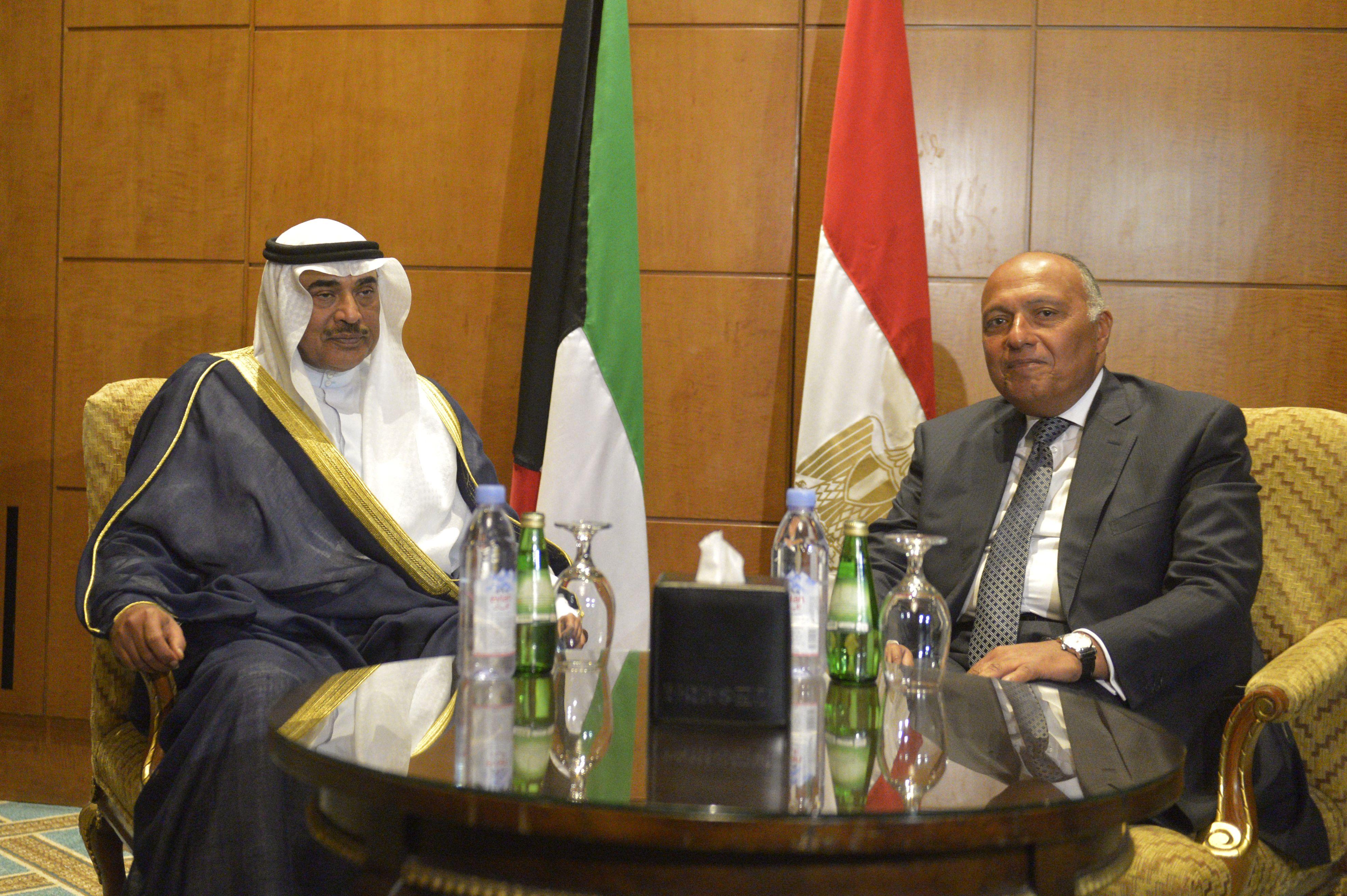 وزيرا خارجية مصر والكويت يبحثان أزمة قطر