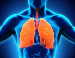 فوائد الكمون فى علاج الجهاز التنفسى
