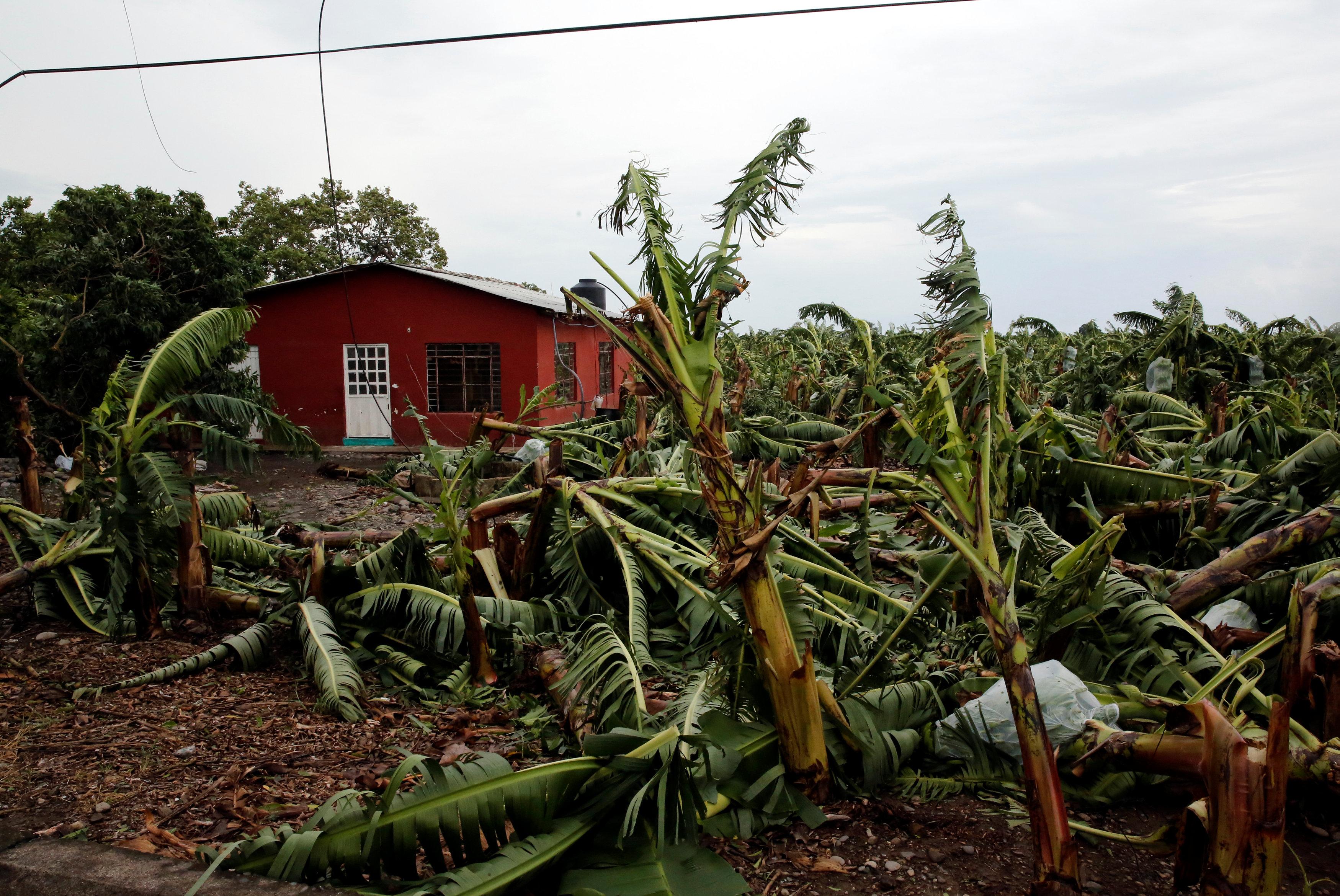 منطقة زراعية تتأثر بالإعصار