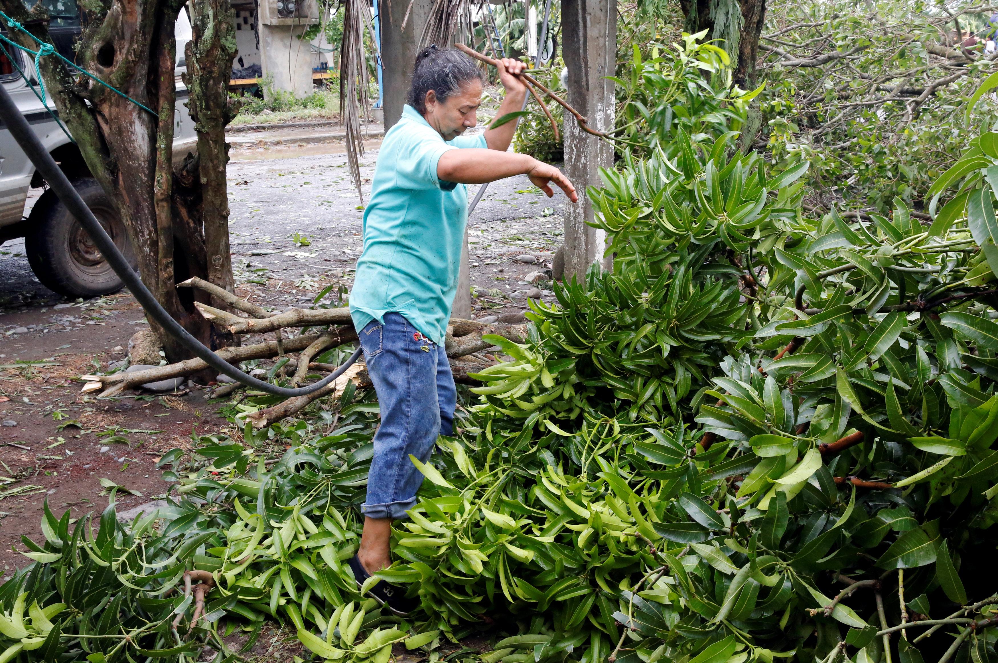 امرأة قرب شجرة سقطت بسبب الإعصار