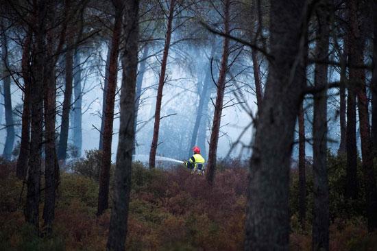 أحد رجال الإطفاء يكافح الحرائق