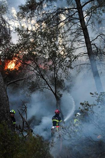 رجال الإطفاء وسط النيران بغابات فرنسا