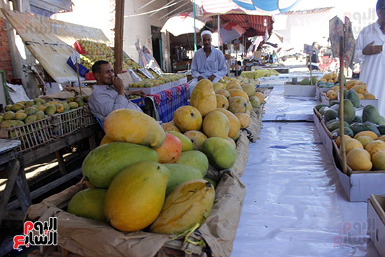 أنواع المانجو في الأسواق.