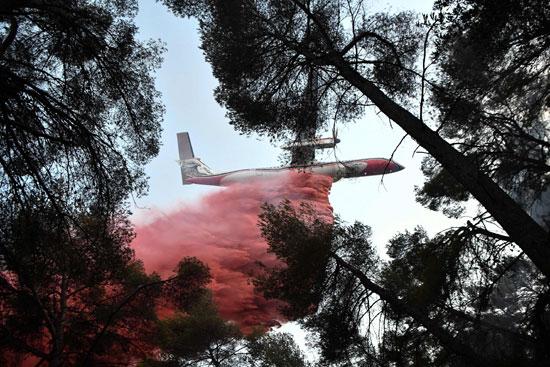 طائرة تستخدم فى مكافحة الحرائق