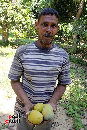 مزرعة أل دهشان  في  الاسماعيلية يعمل  بها 10عمال علي الاقل