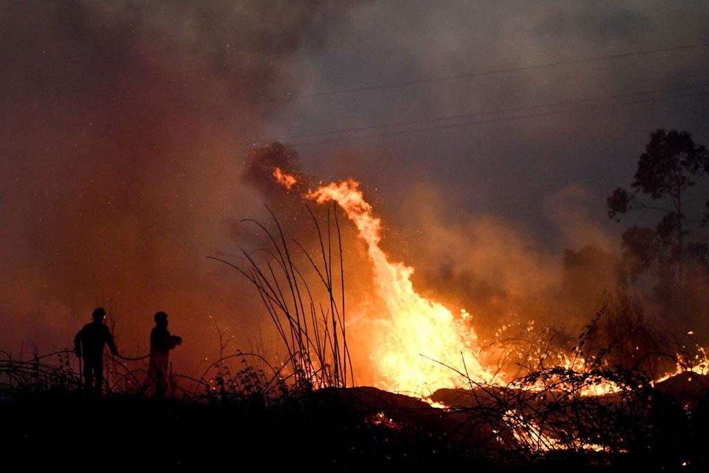 النيران تلتهم مئات الافدنة
