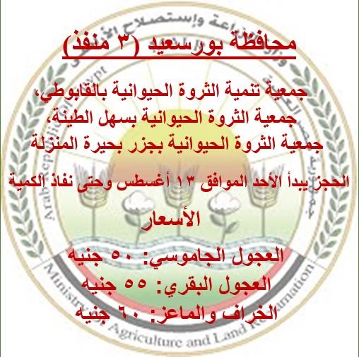 محافظة بورسعيد_2