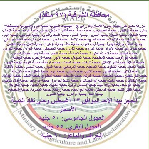 محافظة الشرقية_1
