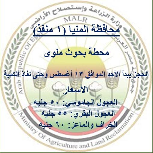محافظة المنيا_3