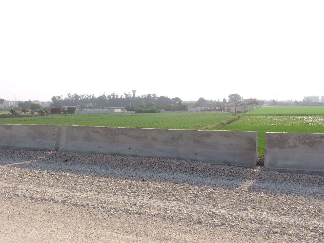 تبوير الأراضى الزراعية حول طريق شبرا ـ بنها الجديد (3)