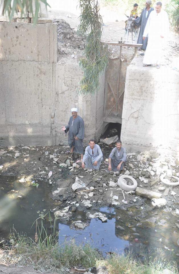 معاناة فلاحو المنشاوية من نقص مياه الرى (5)