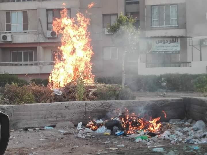 انتشار القمامة (2)
