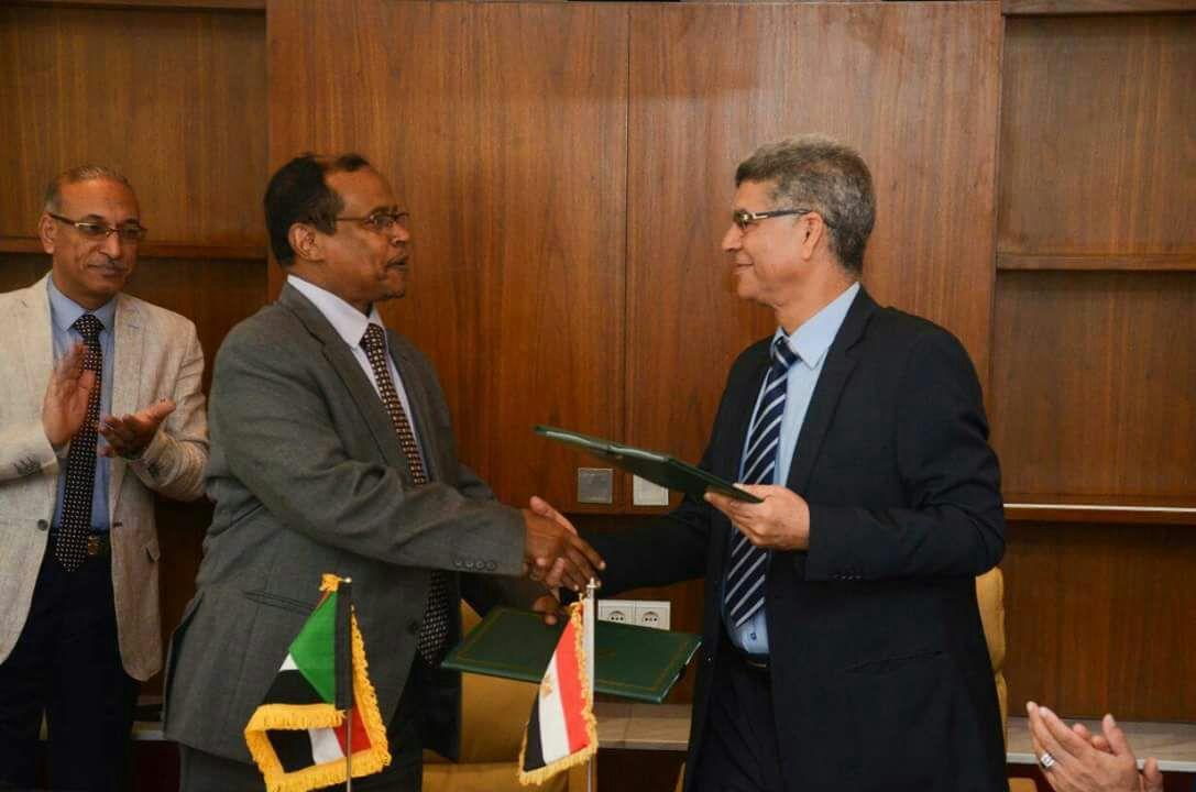 اللجنة المشتركة بين مصر والسودان حول المعابر