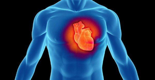 صحة-القلب-2