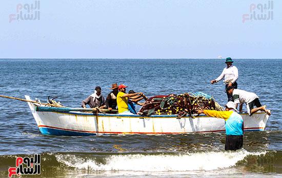 صيد سمك السردين ببورسعيد (7)