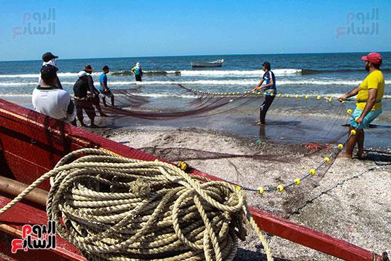 صيد سمك السردين ببورسعيد (27)