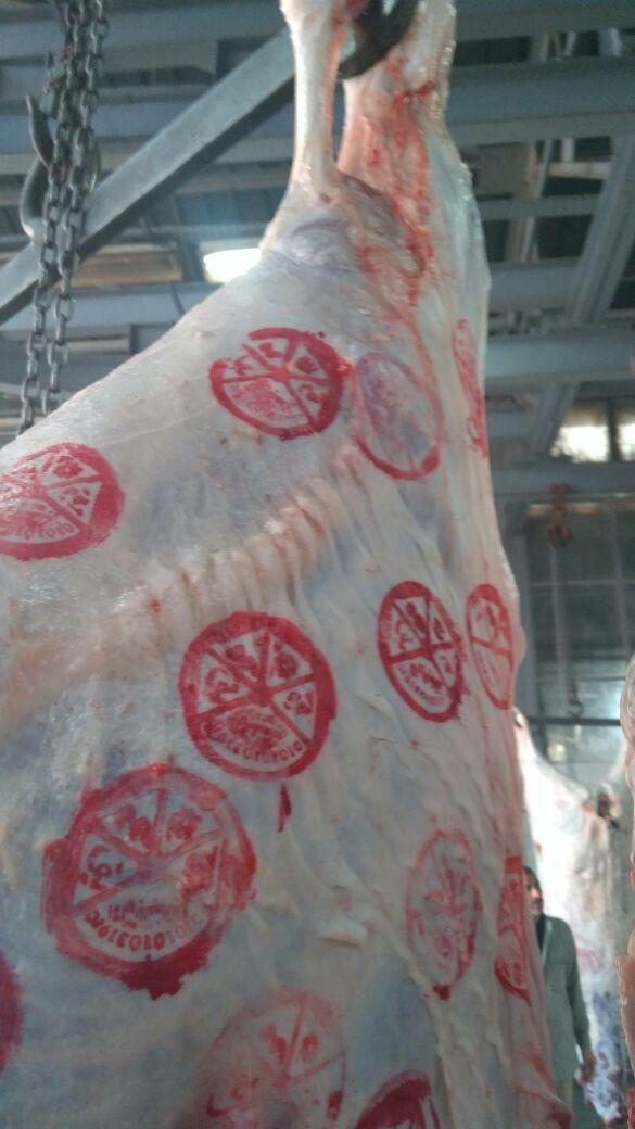 اختام اللحوم الجديدة